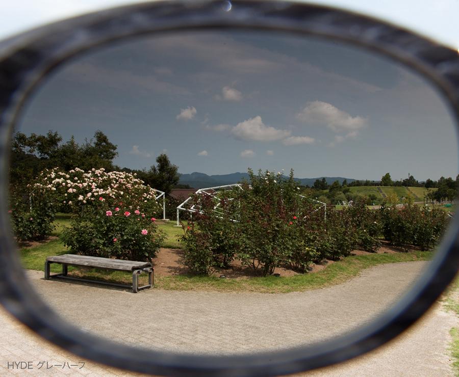 HYDEグレーハーフのレンズ越し風景
