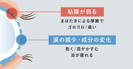 粘膜が弱る、涙の減少・成分の変化