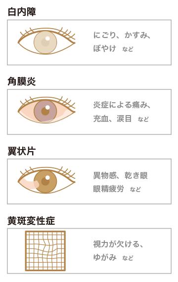 主な眼疾患の例